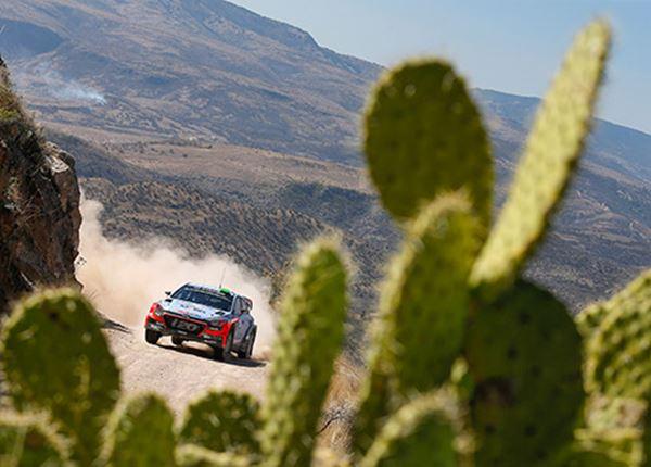Hyundai heeft de snelste rallyauto. Die overwinning komt wel
