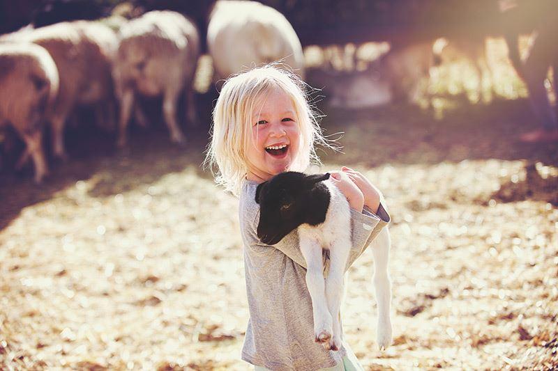 Beesten knuffelen op de boerderij