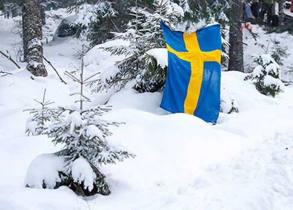 Next stop: Rally van Zweden